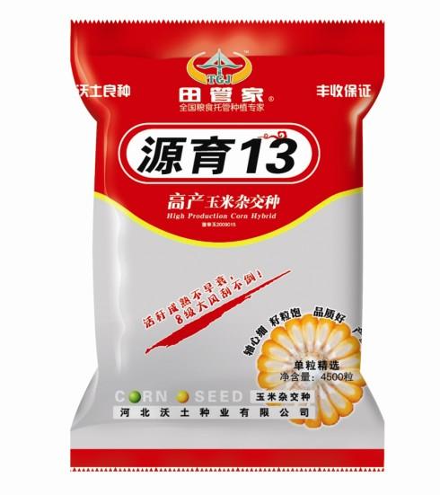玉米高产新品种源玉13 河北雷火电竞csgo独家生产经营